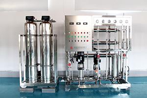 0.25T双级纯化水设备