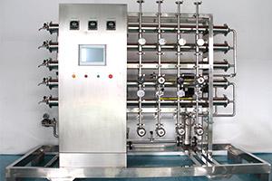 1T纯化水设备